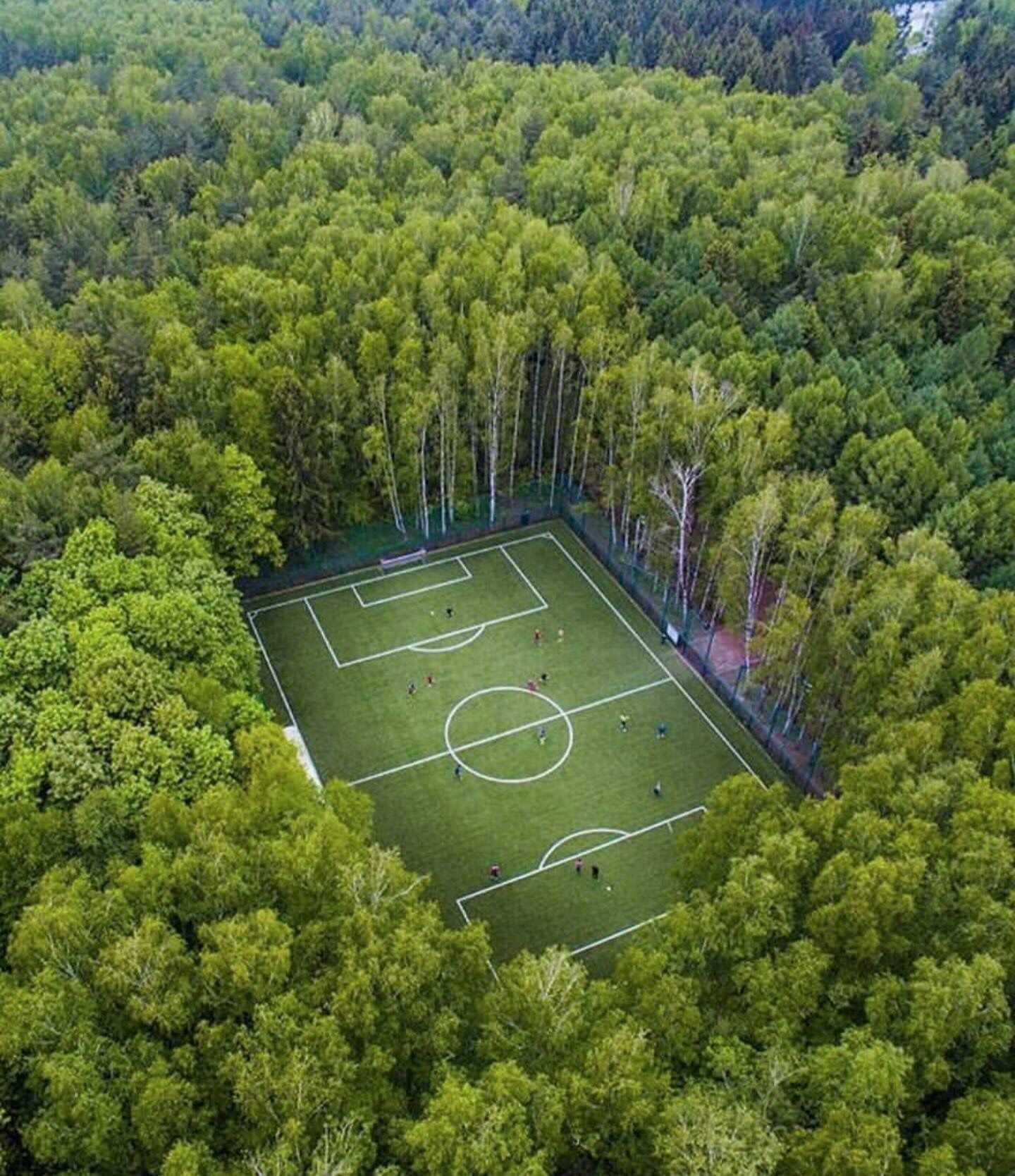 Moscow Leadership With This Football Field In The Forest Places To