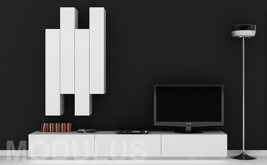 Modulus muebles de dise o wall unit buenos aires tv for Muebles de oficina modernos buenos aires