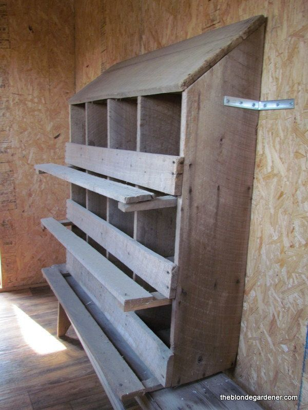 All About Chicken Roosting Ideas For Your Chicken Coop ...