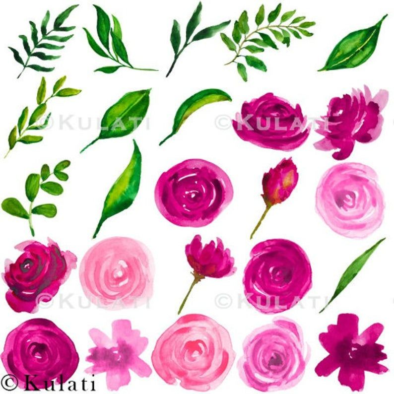 Instant Download Pink And Orange Watercolor Roses Clipart