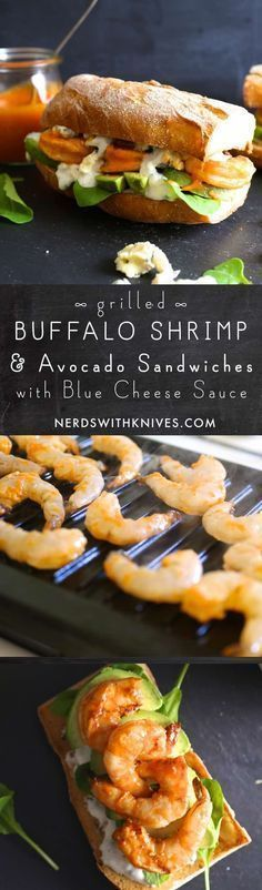 Grilled Buffalo Shrimp And Avocado Sandwiches With Blue Cheese Sauce #buffaloshrimp Grilled Buffalo Shrimp And Avocado Sandwiches With Blue Cheese Sauce #buffaloshrimp Grilled Buffalo Shrimp And Avocado Sandwiches With Blue Cheese Sauce #buffaloshrimp Grilled Buffalo Shrimp And Avocado Sandwiches With Blue Cheese Sauce #buffaloshrimp Grilled Buffalo Shrimp And Avocado Sandwiches With Blue Cheese Sauce #buffaloshrimp Grilled Buffalo Shrimp And Avocado Sandwiches With Blue Cheese Sauce #buffaloshr #buffaloshrimp