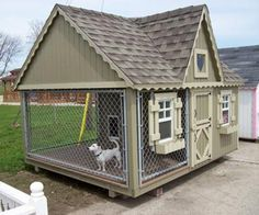 Now This Is A Dog House
