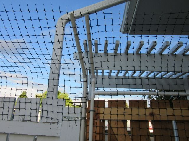 Cat Fence made from pvc pipe: Wood Gate | Cat Furniture, Ramps and ...