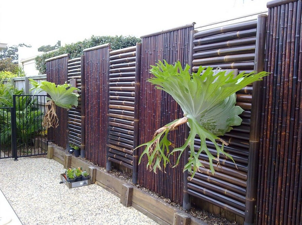 Superieur Image Of: Diy Bamboo Fence Frame
