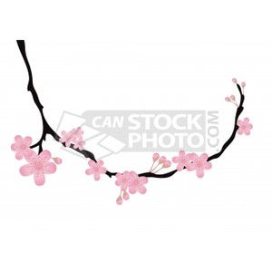 Vectors of twig of orchid - Vector illustration of beautiful ...