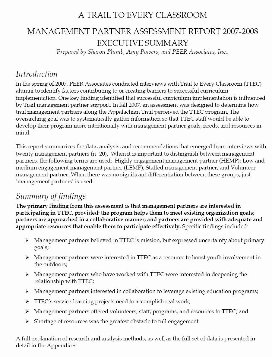 Executive Summary Template for Report Unique 13 Executive