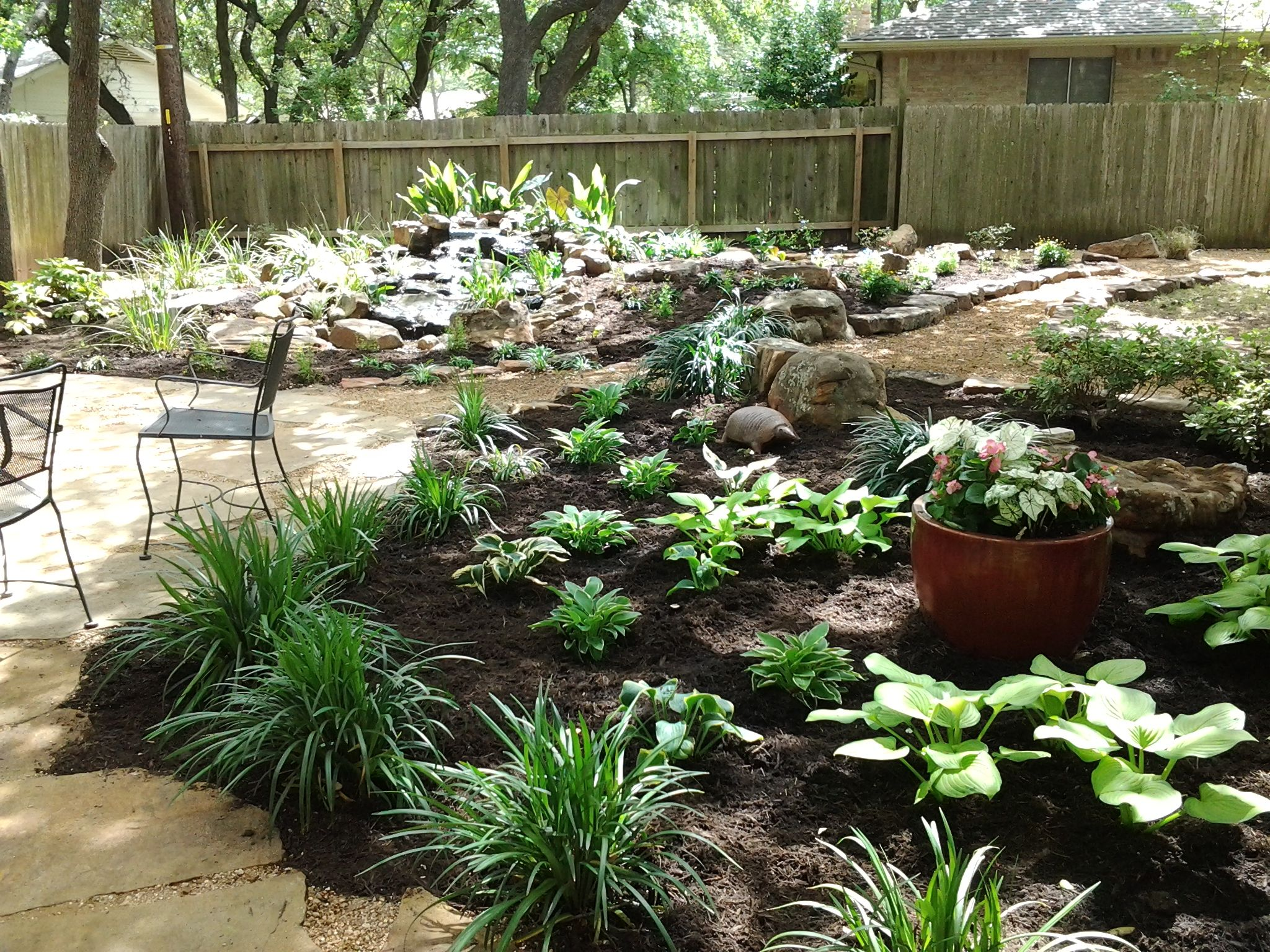 Shade garden with a water feature. Yes those are Hostas in Austin ...