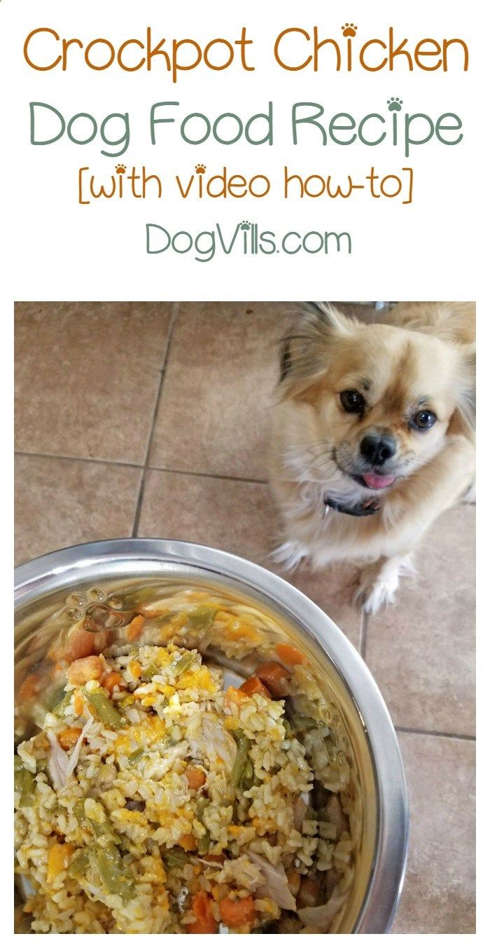 Looking for a homemade dog food recipe that doesnt take a ton of looking for a homemade dog food recipe that doesnt take a ton of time to whip up try this crockpot chicken forumfinder Image collections