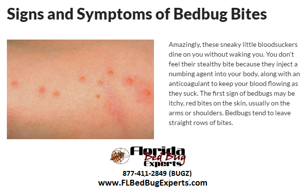 Signs of bed bugs image by FL Bed Bug Experts on Signs of