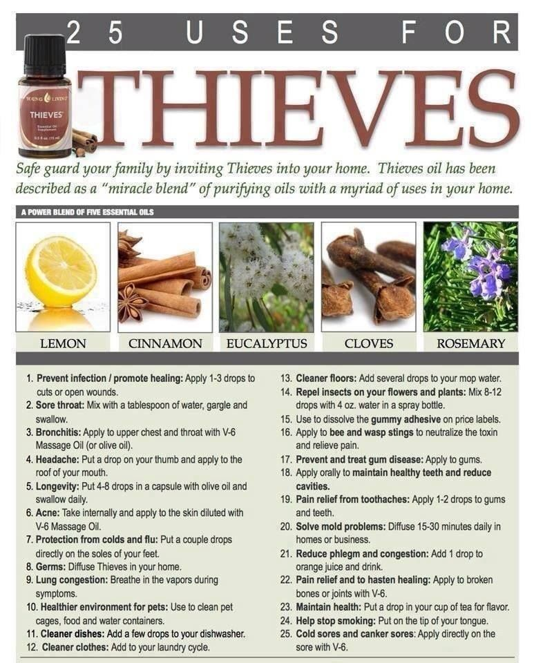 25 Uses for Thieves