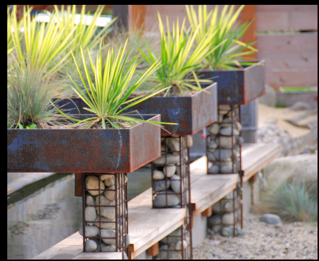 Raised Planter Box Holders River Rock In Wire Mesh Modern Landscaping Contemporary Landscape Modern Garden Design