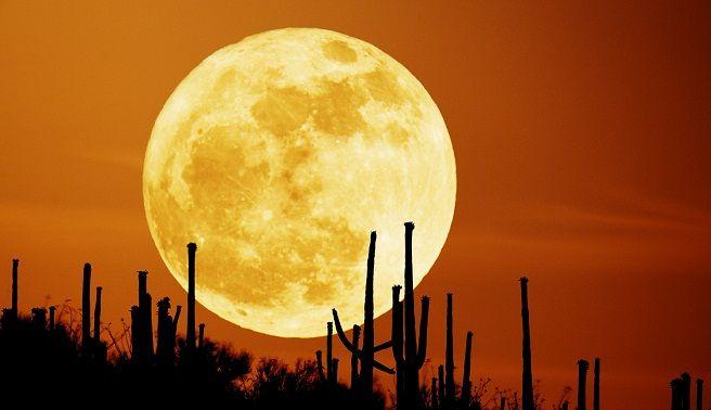 Namasté Diosa Luna ✩★OneLove★✩ #inspiraZION www.flormoon.com.ar