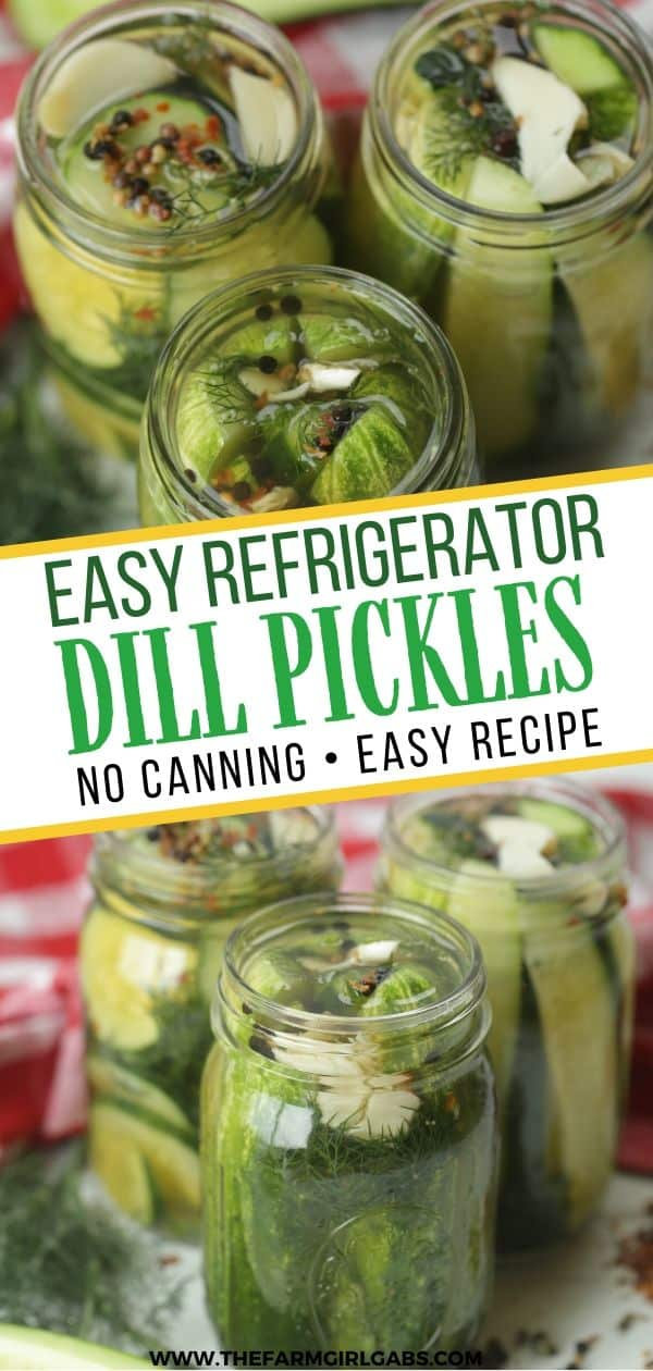 Easy Homemade Refrigerator Dill Pickles