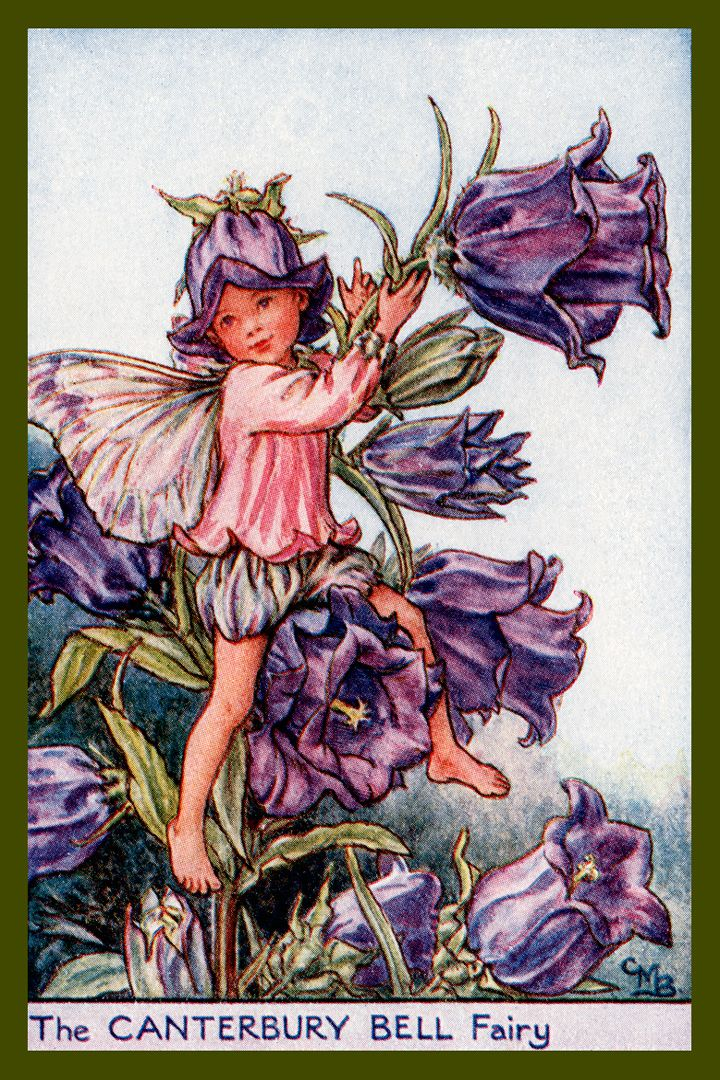 The Canterbury Fairy By Cicely Mary Barker From The 1920s Quilt Block Of Vintage Fairy Image Printed On Cotton Ready Fairy Art Flower Fairies Vintage Fairies