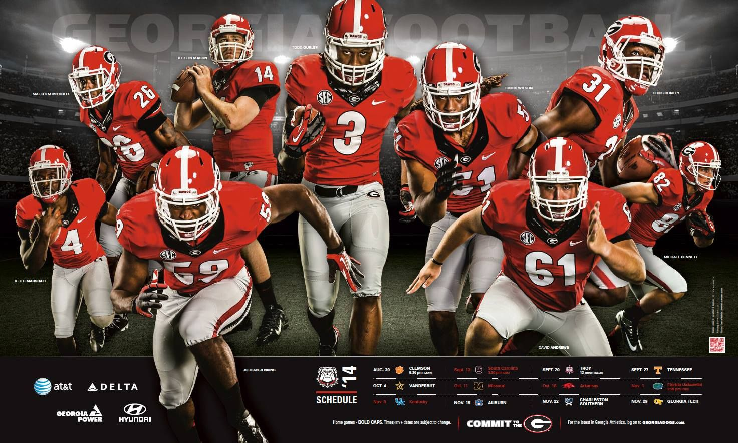 Dawgs 2014 poster football, football