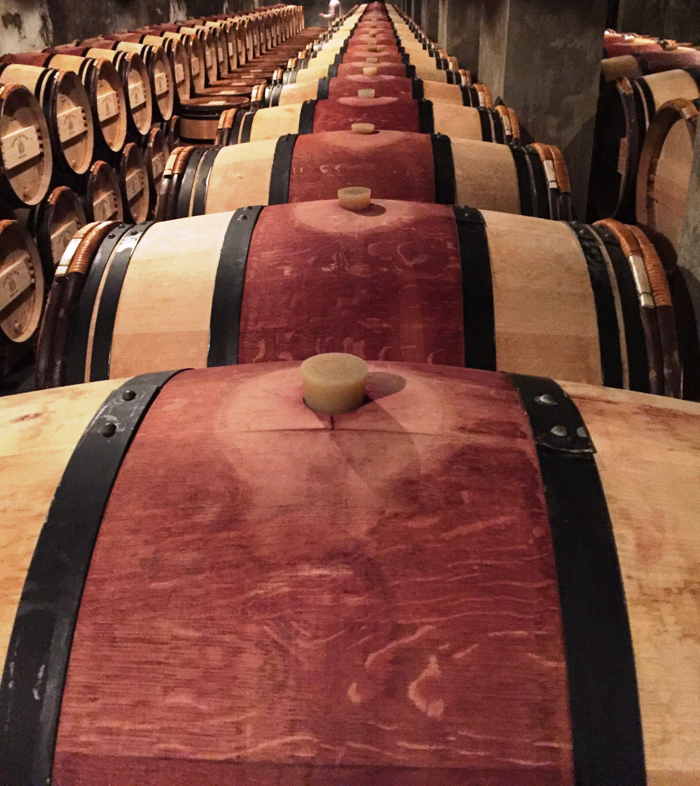Alignement De Futs De Vin Rouge Dans Le Chai Du Chateau Du Tertre A Bordeaux Red Wine Oak Barrel Alignment In Cellar C Thierry Lopez De Arias Wine France