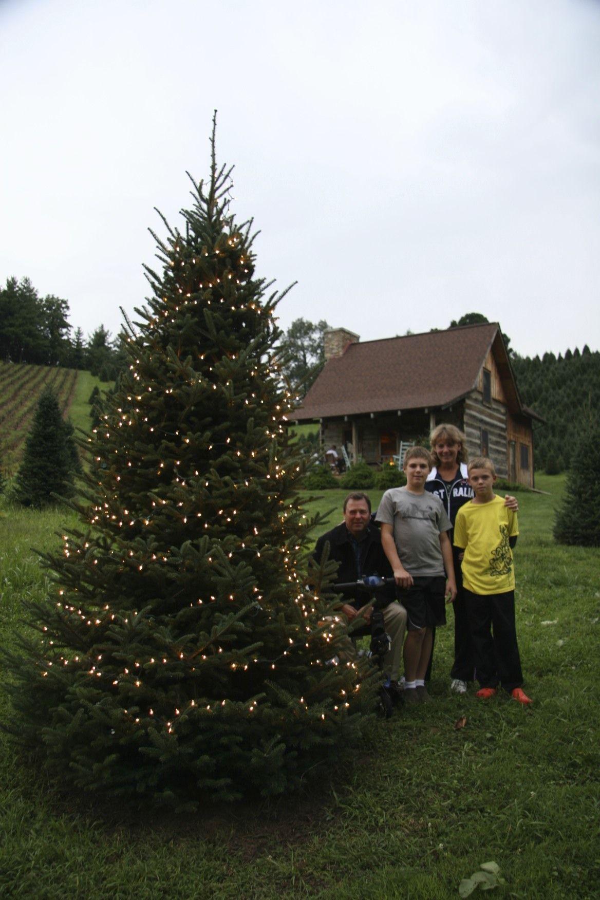 Pin On Nc Choose Cut Christmas Trees