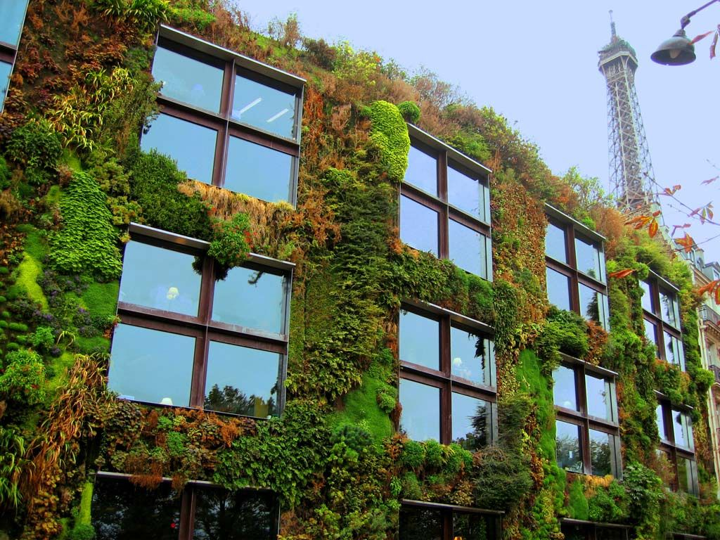 The Plant Wall of the Quai Branly Museum conceived by Patrick Blanc ...