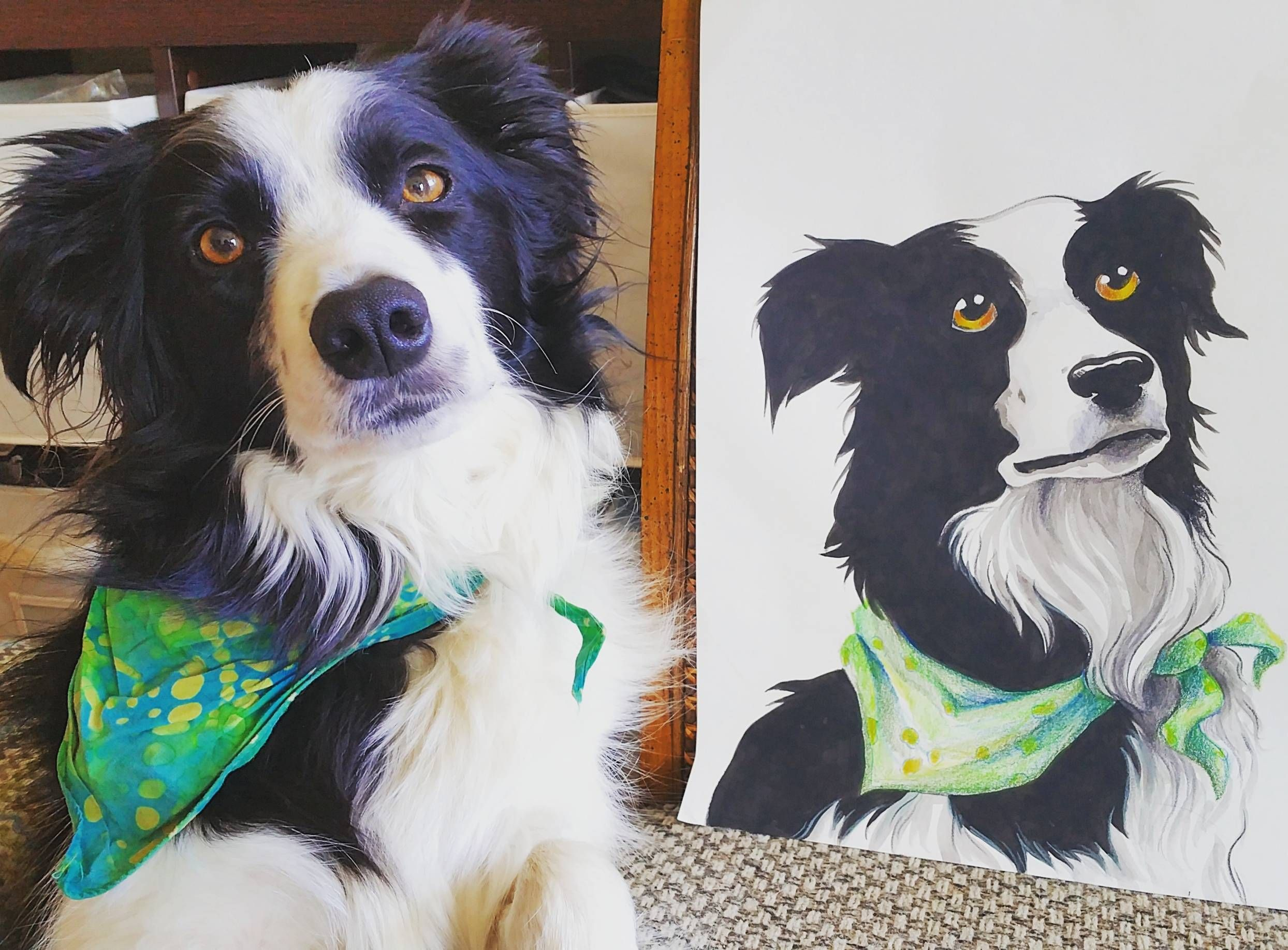 Got a portrait of my doggo for reddit gifts! http://ift.tt/2p5vNkL