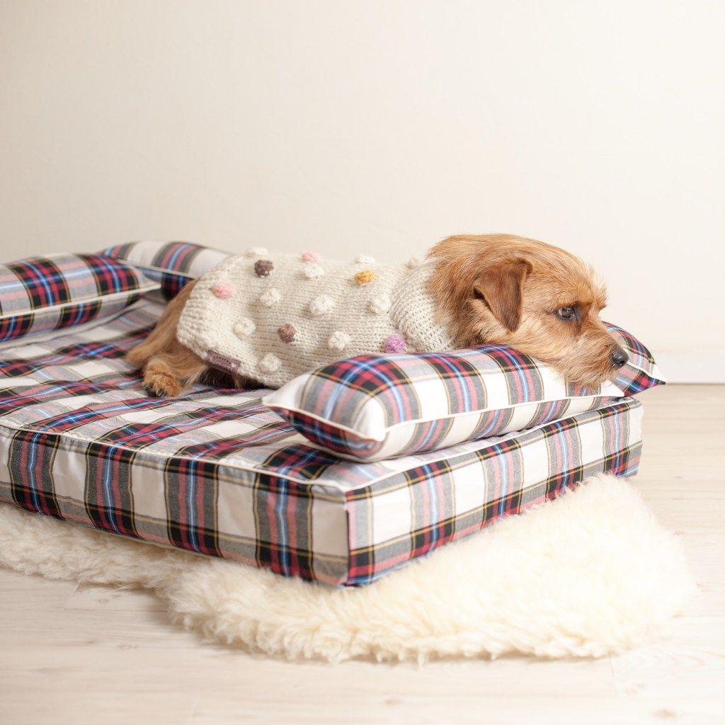 オールシーズン用初となるクッション付きベッドカバー Anberso Blog カバー 犬 ベッド