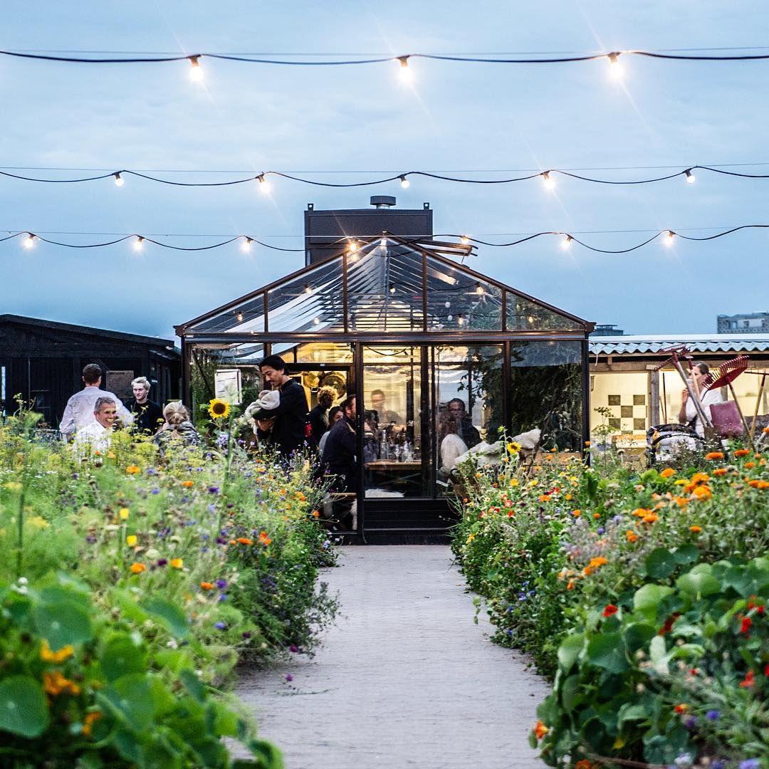 Issy Croker On Instagram So Happy I Made It To This Beautiful Rooftop Restaurant In Copenhagen Last Night Stedsa Townhouse Garden Rooftop Garden Copenhagen