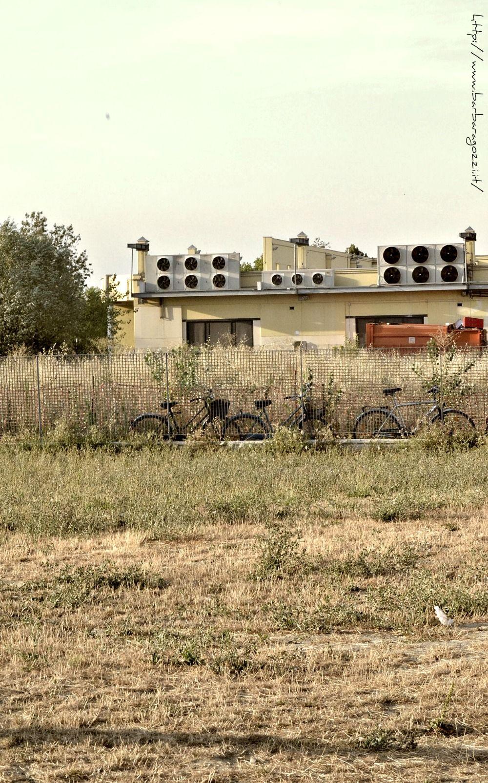 Biciclette nella steppa industriale.