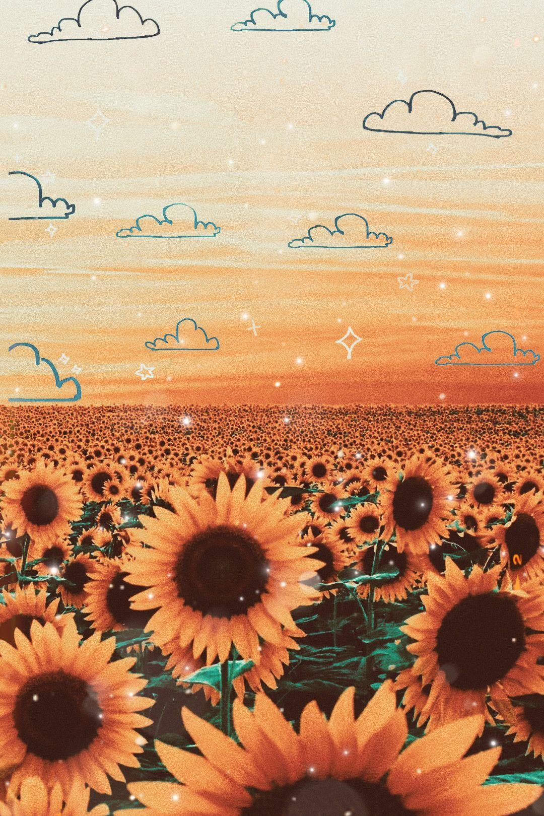 Photo By Brooke11717 Sunflower Wallpaper Sunflower Iphone Wallpaper Aesthetic Pastel Wallpaper