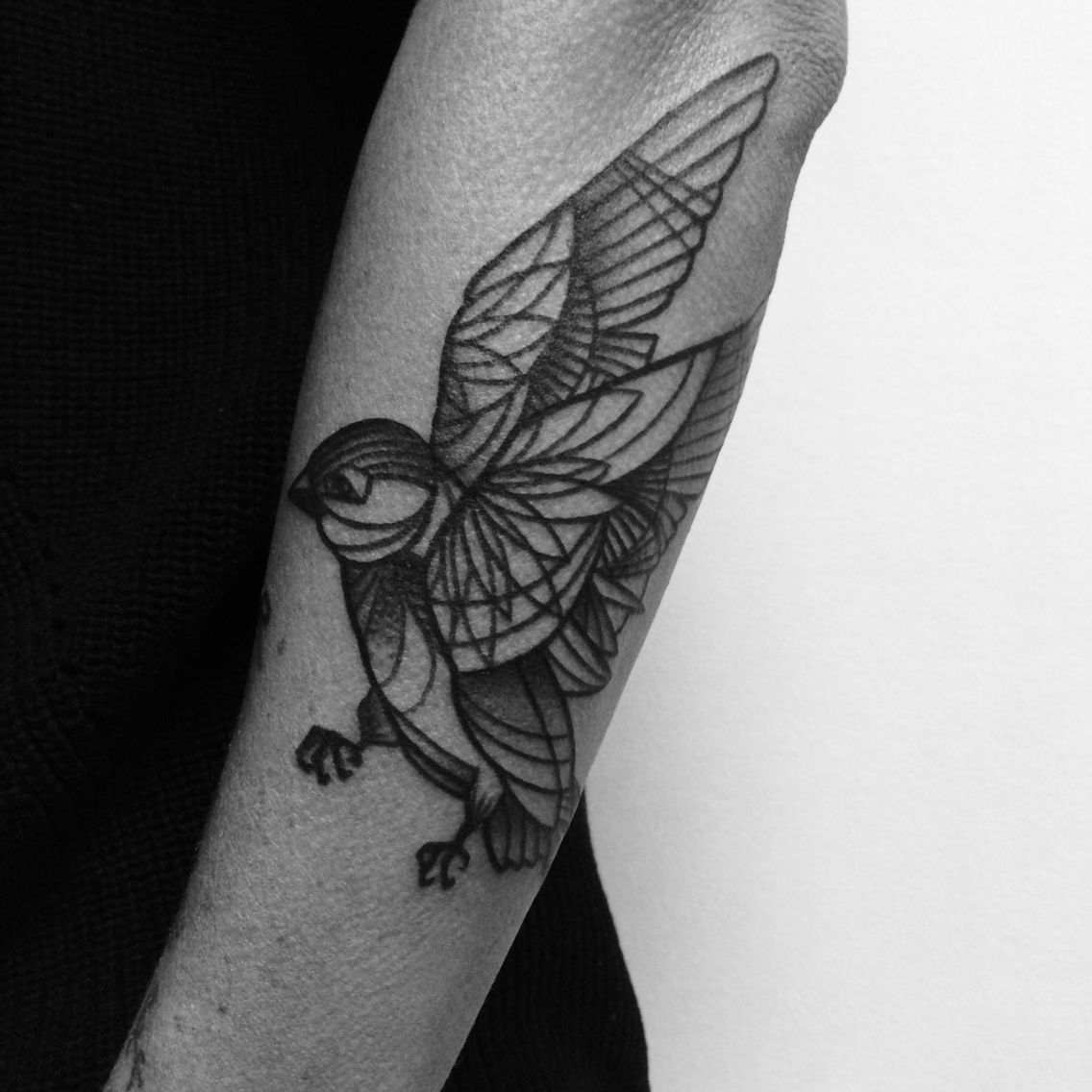 Blackwork bird tattooed by noelle lamonica divine machine for Tattoo buffalo ny