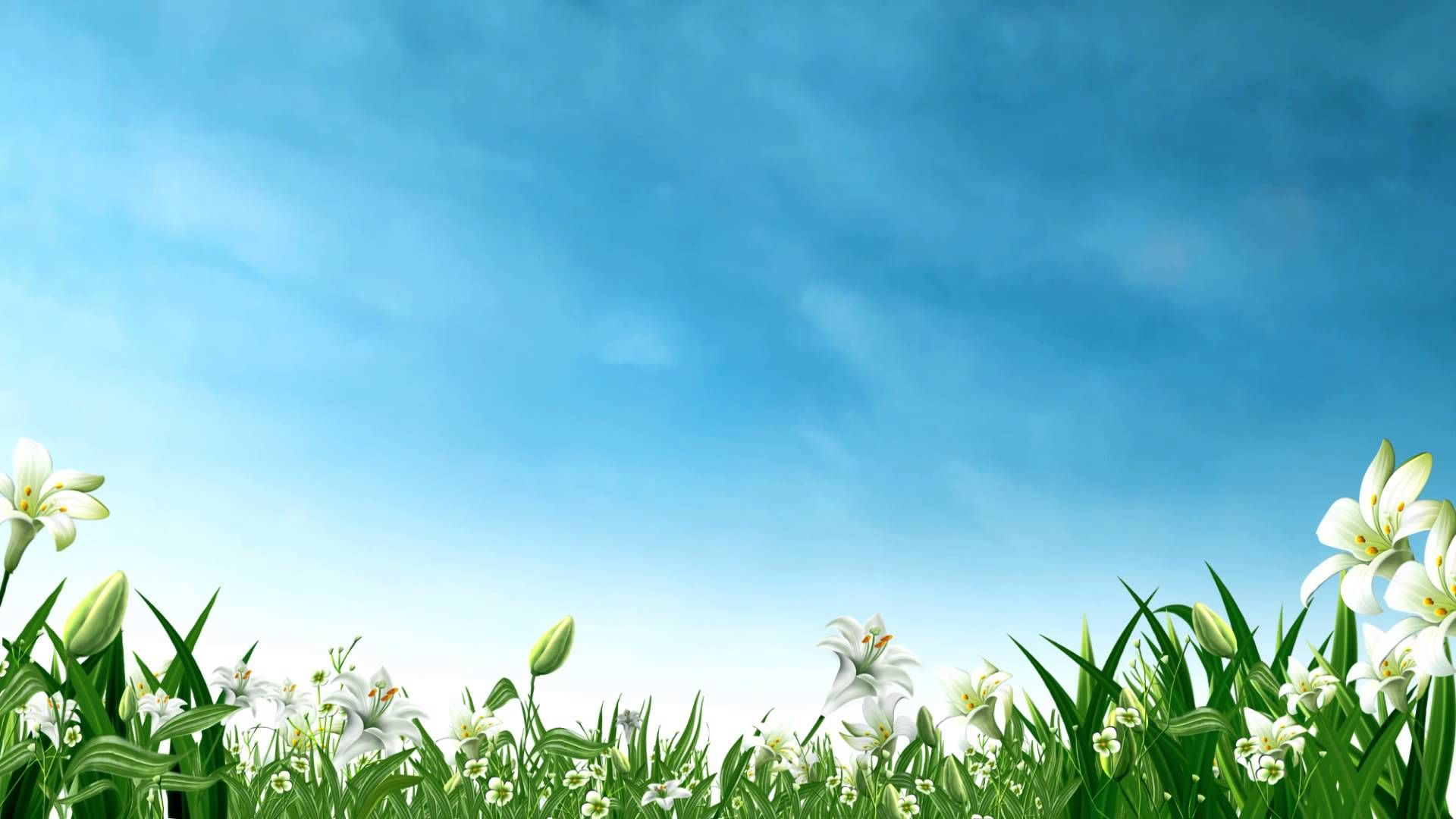 Video Background Hd Landscape Hd Style Proshow Styleproshow Nature Pictures Nature Gif Nature Images