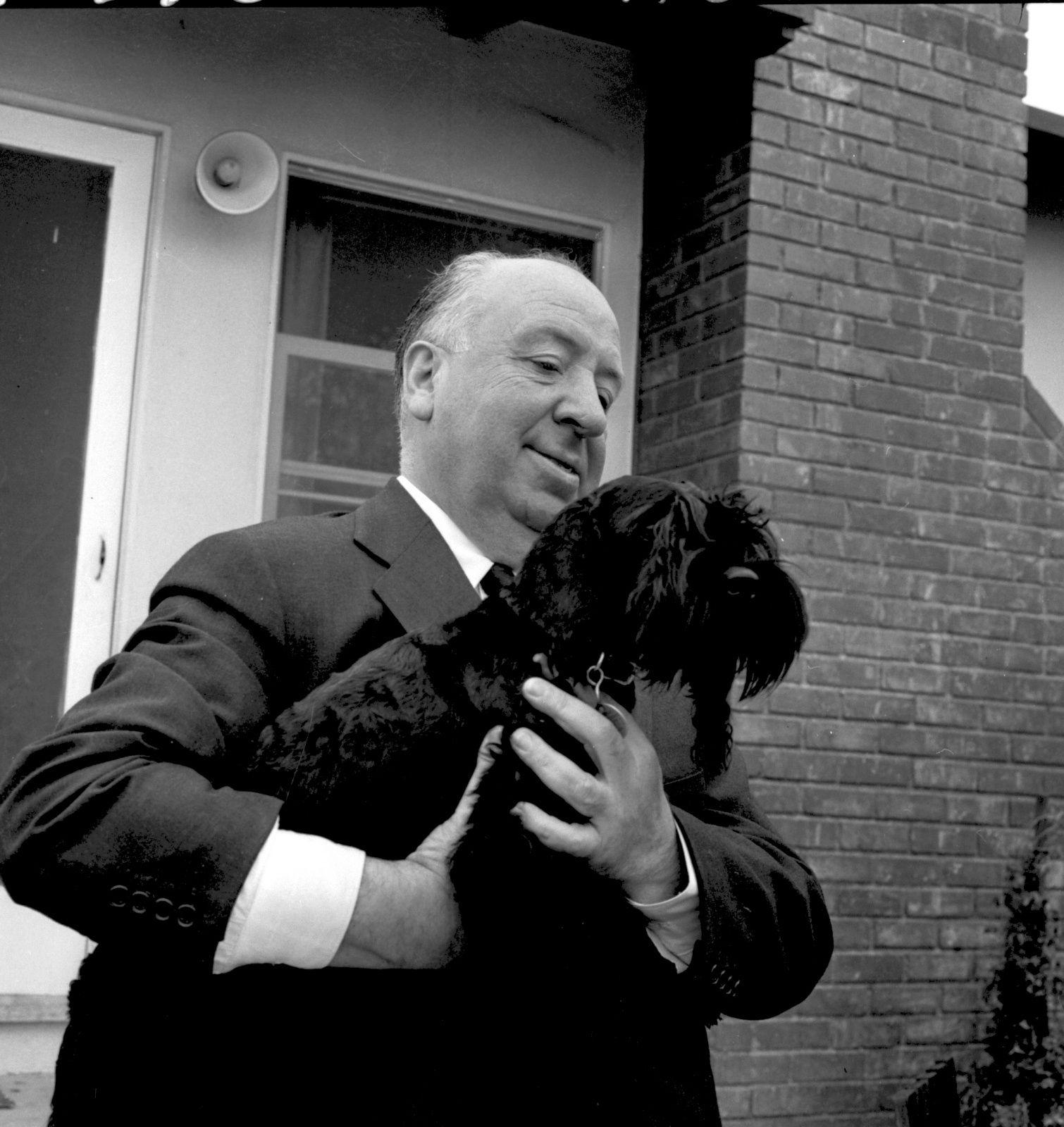 Alfred Hitchcock - Cerca con Google