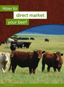 How To Direct Market Your Beef Cattle Ranching Cattle Farming Raising Cattle
