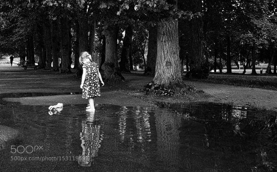 Magical mystery is only a puddle away by fotowijk