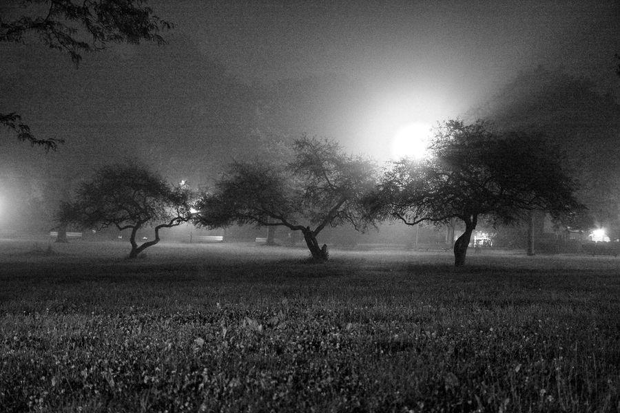 It's coming... by Milton Mpounas, via 500px