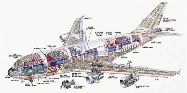 Airbus A380 Double Decker Color Schematic | Military and Commercial