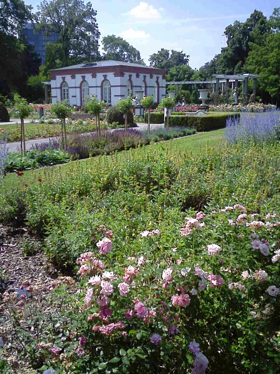 Botanicki Vrt Frankfurt With Images Places To Go Plants Places