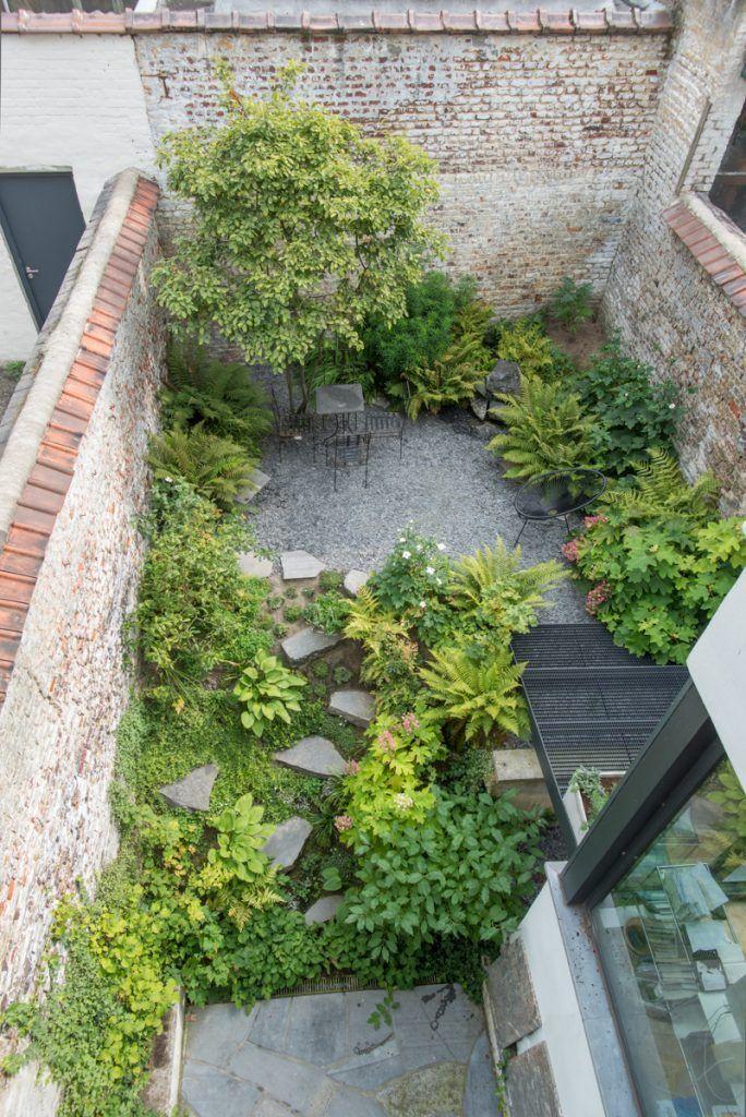 carexTours Small city garden, Urban garden