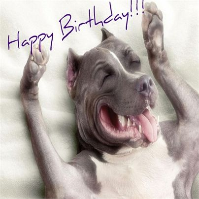 Ich Wunsche Dir Alles Gute Zum Geburtstag Geburtstagswunsche