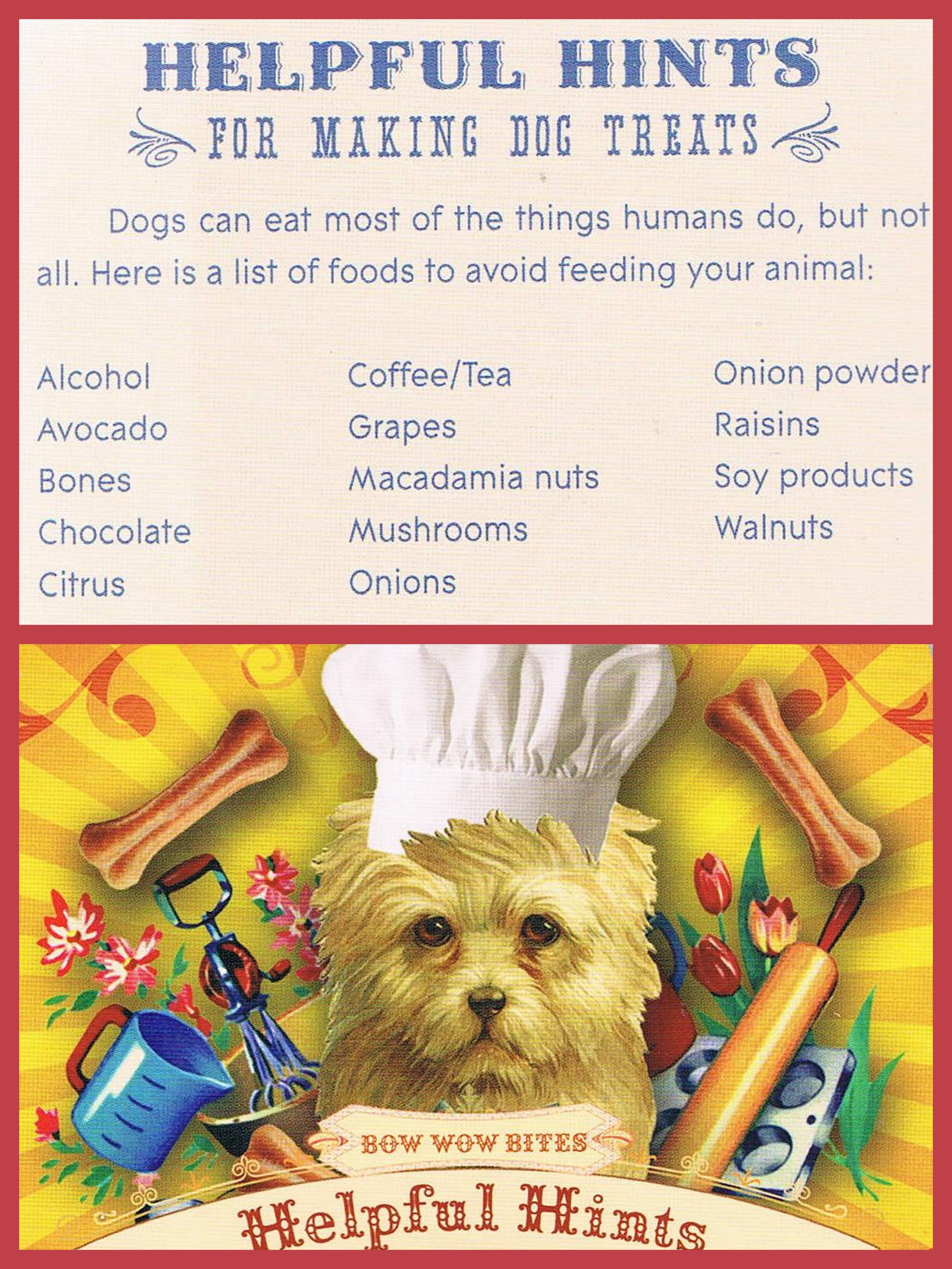 Things To Avoid Giving Your Dogs I Haven T Done Much Research To