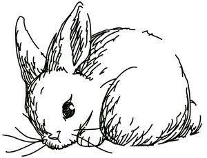 Lapin dessin facile easter pinterest lapin dessin facile dessins faciles et lapin - Dessin facile lapin ...