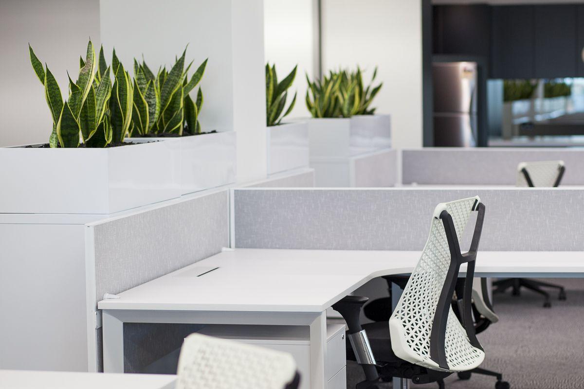Open Plan Workstation Fresh White Office Space Corner