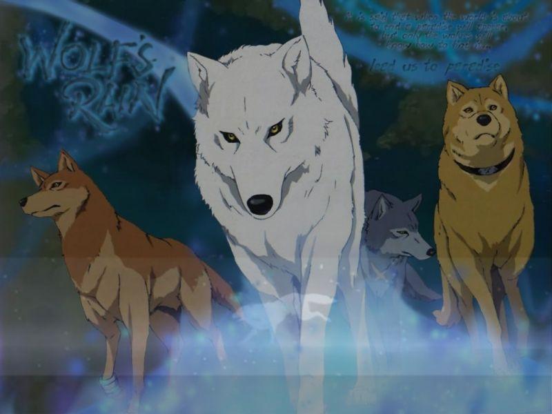 Anime Wolf Pack Anime Galleries Dot Net Dark S Gallery Wolf