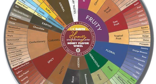 Uc Davis Unveils New Honey Flavor And Aroma Wheel Eat