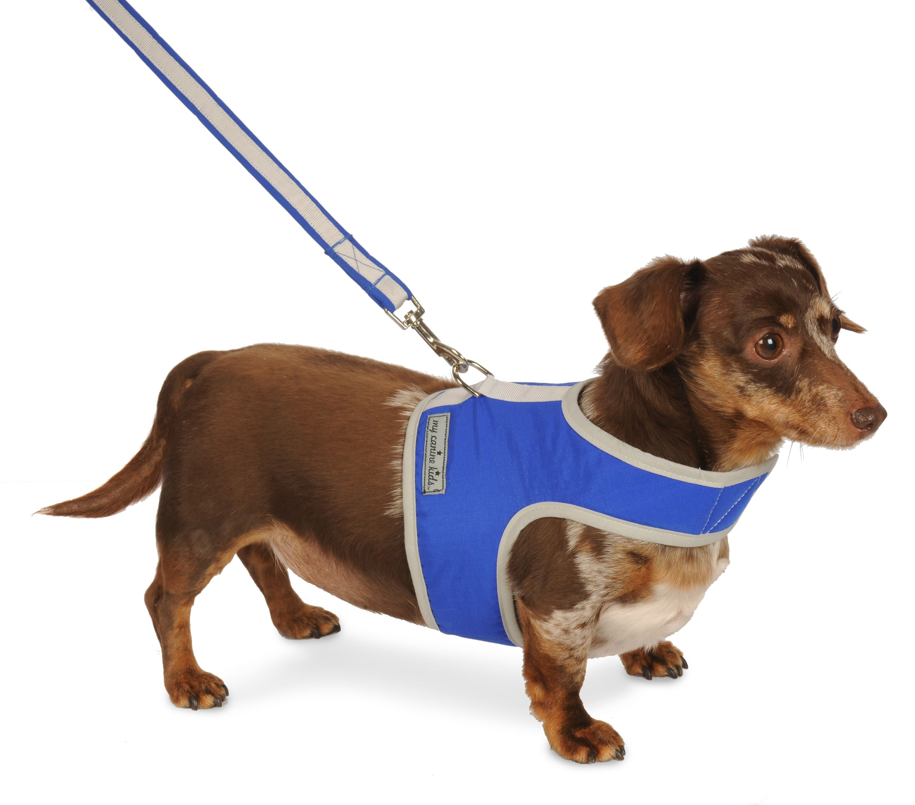 3802 Athletic Mesh Reflective Vest Harness Dog Harness Dogs