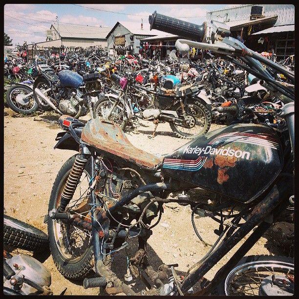 Boisevintagecycle Harley Davidson Amf Boise Junkyard Motorcycle Parts At Boise Vintage Cycle Bike Art Big Dogs Harley