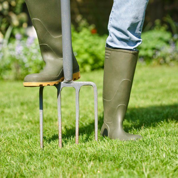 Lawn Maintenance Schedule | Planet Natural