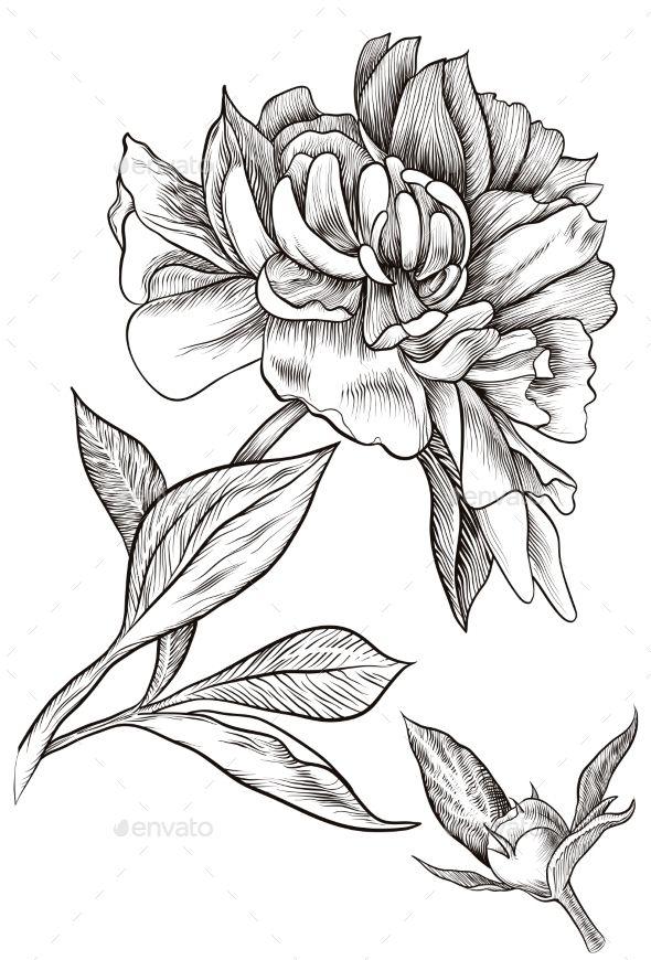 Send Beautiful Flowers Now