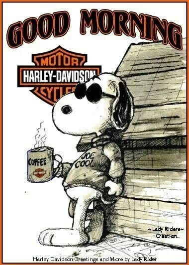 Harley Davidson Love Quotes Magnificent Harley Davidson Snoopy Love This Suzie B Here's To Ya With Luv