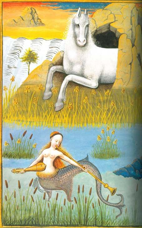 from The Grand Medieval Bestiary