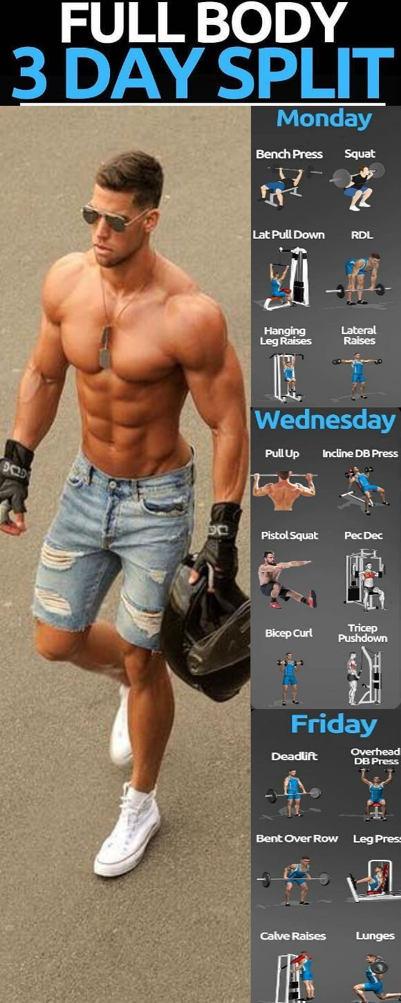 A split workout routine targets one or two specific muscle groups on different days. do two days a w...