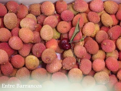 Entre Barrancos  (COCINA): Congelación de frutas: citricas, lyches, mangos, m...